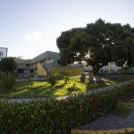 Jardim da Faculdade